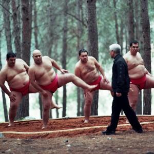 sumo_img_02_down.